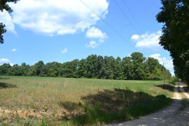 971 Robertson Rd - Tract 6B, Mc Ewen, TN 37101 (MLS #RTC2154979) :: Village Real Estate