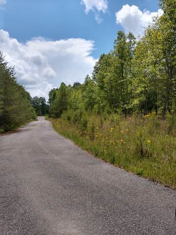 0 Palamino Way SW, Spencer, TN 38585 (MLS #RTC2155159) :: John Jones Real Estate LLC