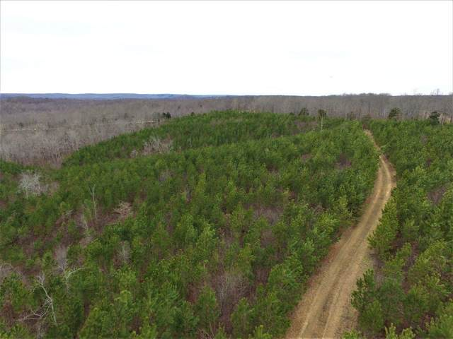0 Dogwood Rd, Hurricane Mills, TN 37078 (MLS #RTC2156022) :: DeSelms Real Estate