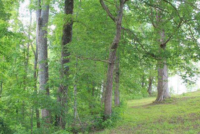 0 Riley Creek Road, Whitleyville, TN 38588 (MLS #RTC2156165) :: Village Real Estate