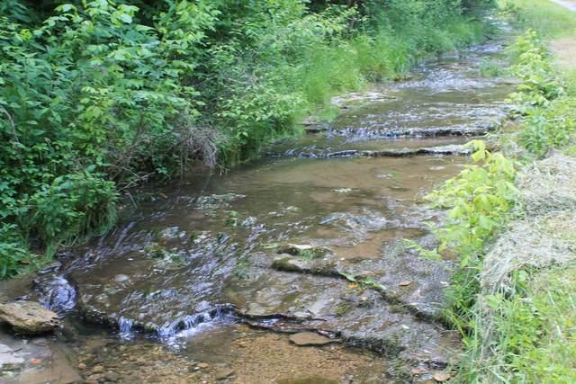 0 Hensley Creek Lane, Whitleyville, TN 38588 (MLS #RTC2156230) :: Village Real Estate