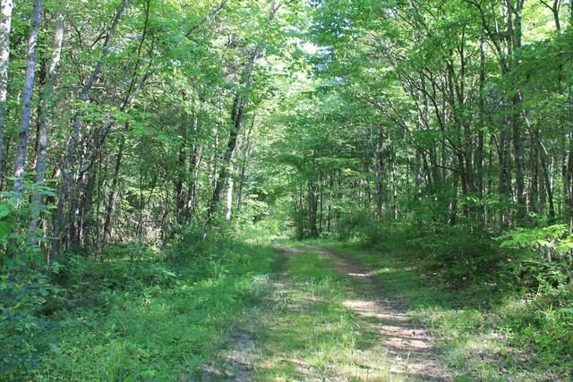 0 N Fork Lane, Whitleyville, TN 38588 (MLS #RTC2156318) :: Village Real Estate