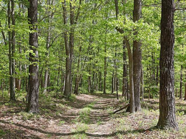 0 Grouse Ridge Road, Harriman, TN 37748 (MLS #RTC2156515) :: Village Real Estate