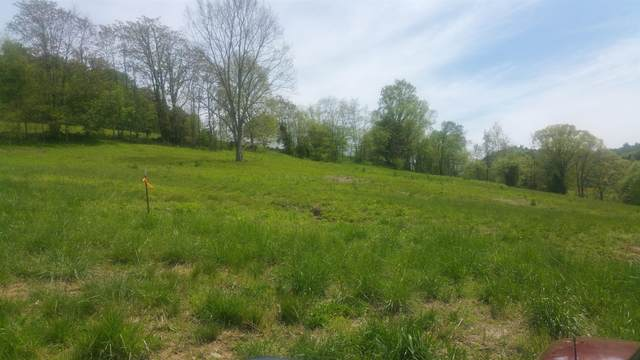 0 Maggart Rd, Chestnut Mound, TN 38552 (MLS #RTC2156520) :: Village Real Estate