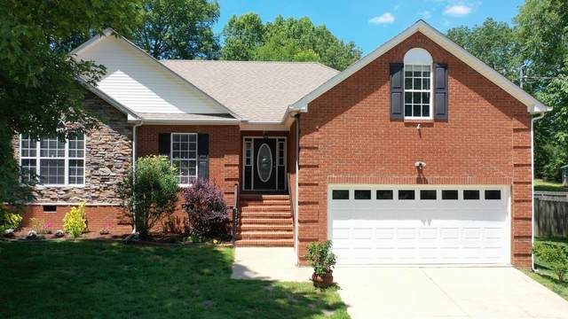 1502 Raylee Dr, Chapel Hill, TN 37034 (MLS #RTC2156762) :: CityLiving Group