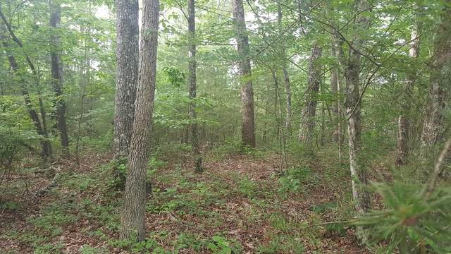 0 Tree Top Circle, Spencer, TN 38585 (MLS #RTC2158294) :: Michelle Strong