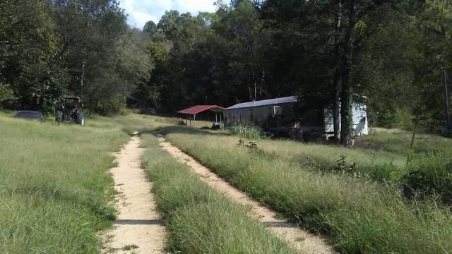 3485 Water Valley Rd, Williamsport, TN 38487 (MLS #RTC2159611) :: Nashville on the Move