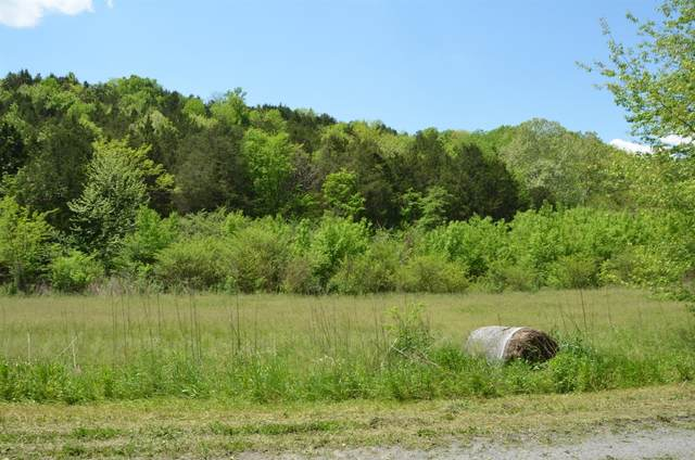 0 Hopkins Hollow Rd, Gainesboro, TN 38562 (MLS #RTC2159812) :: Benchmark Realty