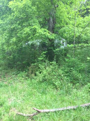 1275 Charles Holt Rd, Adams, TN 37010 (MLS #RTC2160509) :: Berkshire Hathaway HomeServices Woodmont Realty