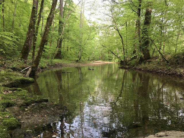 1 Little Pond Creek Rd, Pegram, TN 37143 (MLS #RTC2161139) :: Nashville on the Move