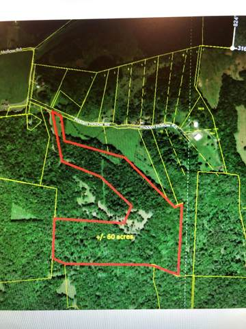 0 Hidden Hollow Road, Dellrose, TN 38453 (MLS #RTC2161581) :: Team George Weeks Real Estate