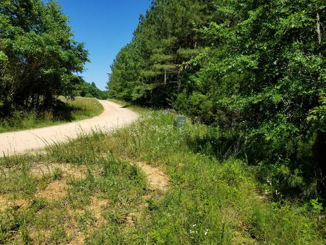 0 Hickory Trace Road, Lyles, TN 37098 (MLS #RTC2161955) :: The Kelton Group