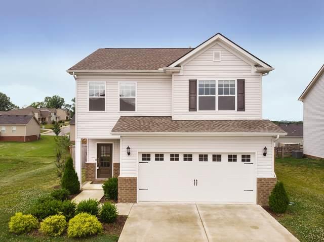 3009 Montrose Ln, Spring Hill, TN 37174 (MLS #RTC2162212) :: DeSelms Real Estate