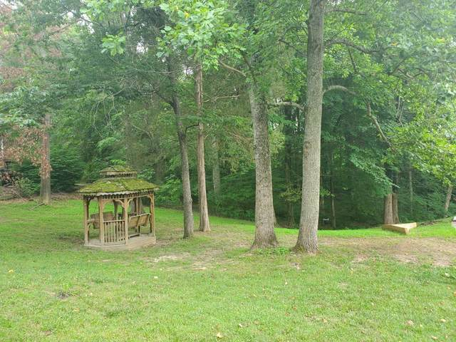 0 Stacy Lane, Clarksville, TN 37043 (MLS #RTC2164882) :: The Milam Group at Fridrich & Clark Realty