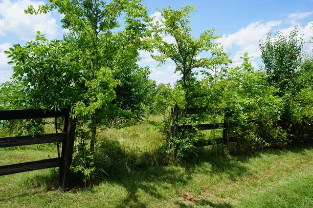 5239 Pickering Rd, Clarksville, TN 37043 (MLS #RTC2165187) :: Village Real Estate