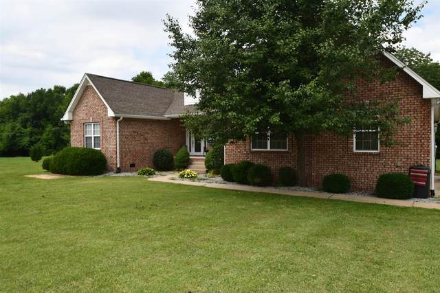 225 Brummitt Rd, Castalian Springs, TN 37031 (MLS #RTC2165241) :: Village Real Estate