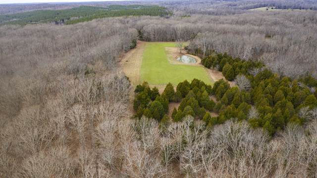 0 Bell Hollow Rd, Vanleer, TN 37181 (MLS #RTC2165246) :: Ashley Claire Real Estate - Benchmark Realty