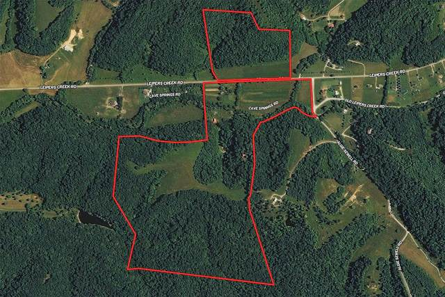 6624 Leipers Creek Rd, Columbia, TN 38401 (MLS #RTC2165290) :: Fridrich & Clark Realty, LLC