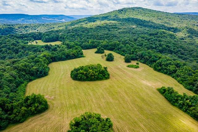 324 C Cardwell Rd, Mc Minnville, TN 37110 (MLS #RTC2165506) :: Village Real Estate