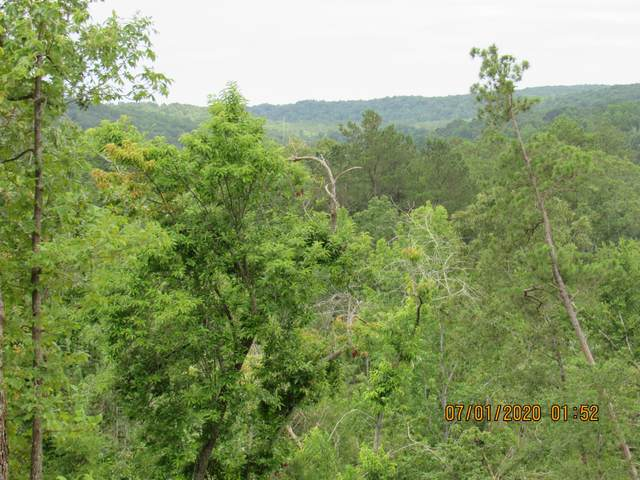 6000 Cuba Landing Rd, Hurricane Mills, TN 37078 (MLS #RTC2165591) :: The Kelton Group