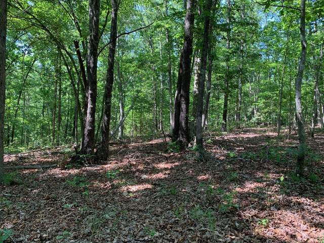 0 Oak Hill, Lyles, TN 37098 (MLS #RTC2165629) :: Ashley Claire Real Estate - Benchmark Realty