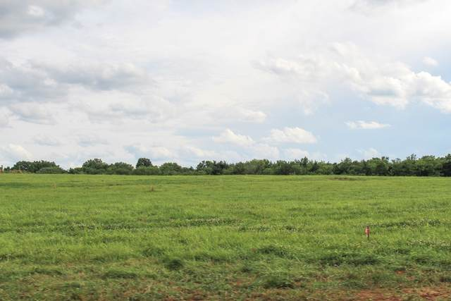 9715 Midland Rd, Bell Buckle, TN 37020 (MLS #RTC2165787) :: Team George Weeks Real Estate