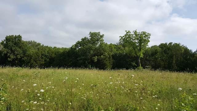 1 Hwy 41A N, Unionville, TN 37180 (MLS #RTC2166045) :: Maples Realty and Auction Co.