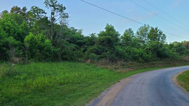 3931 Parchcorn Hollow Rd, Woodbury, TN 37190 (MLS #RTC2166062) :: Fridrich & Clark Realty, LLC