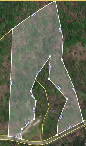 0 Petty Gap Road, Woodbury, TN 37190 (MLS #RTC2166071) :: John Jones Real Estate LLC