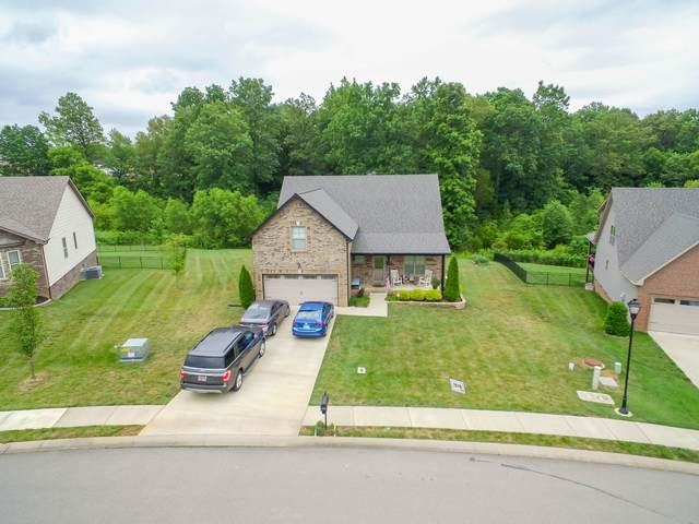 1113 Ivy Brook Way, Clarksville, TN 37043 (MLS #RTC2167030) :: John Jones Real Estate LLC