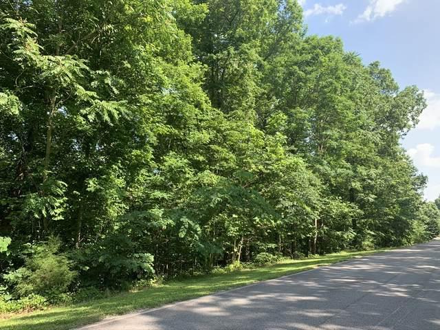 155 Harbor Green Pl, Sparta, TN 38583 (MLS #RTC2167193) :: John Jones Real Estate LLC