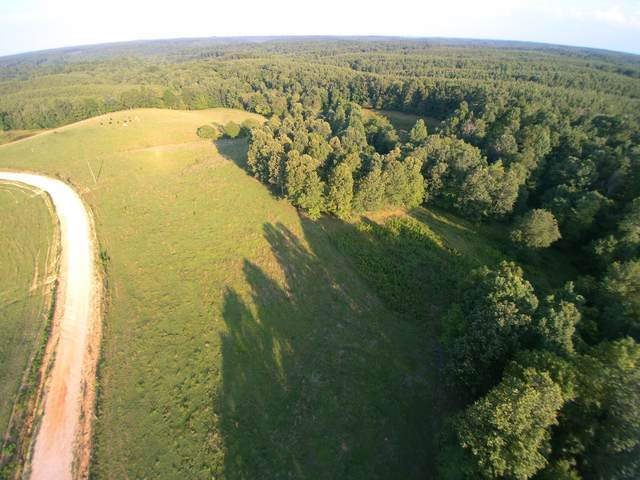 0 Granny Scott Rd, Waynesboro, TN 38485 (MLS #RTC2167707) :: CityLiving Group