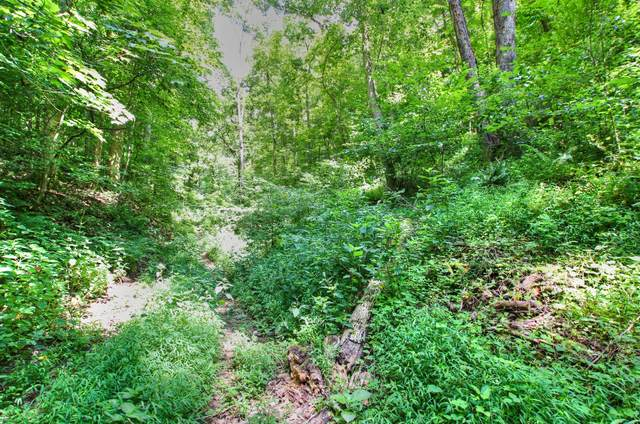 0 Scott Canyon Rd., Smithville, TN 37166 (MLS #RTC2167746) :: The Milam Group at Fridrich & Clark Realty