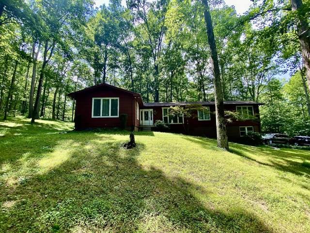3045 Beaver Ct, White Bluff, TN 37187 (MLS #RTC2167822) :: Village Real Estate