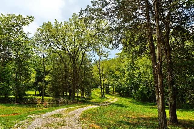 297 Clark Rd, Pulaski, TN 38478 (MLS #RTC2168007) :: Berkshire Hathaway HomeServices Woodmont Realty