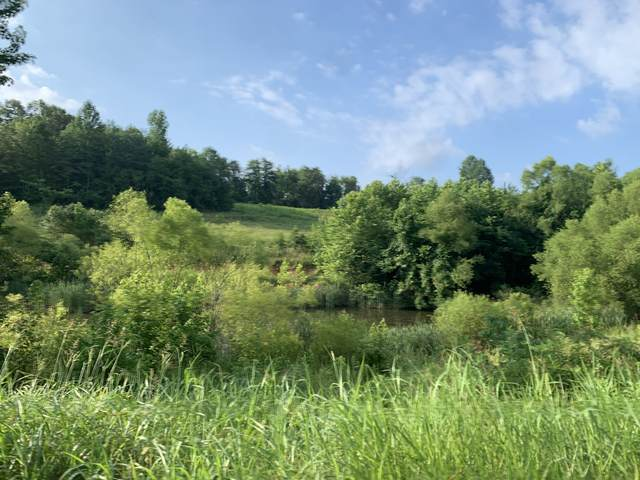 0 Old Highway 48, Cunningham, TN 37052 (MLS #RTC2168362) :: Felts Partners