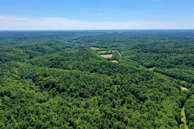 0 Hwy 128, Linden, TN 37096 (MLS #RTC2168521) :: RE/MAX Homes And Estates