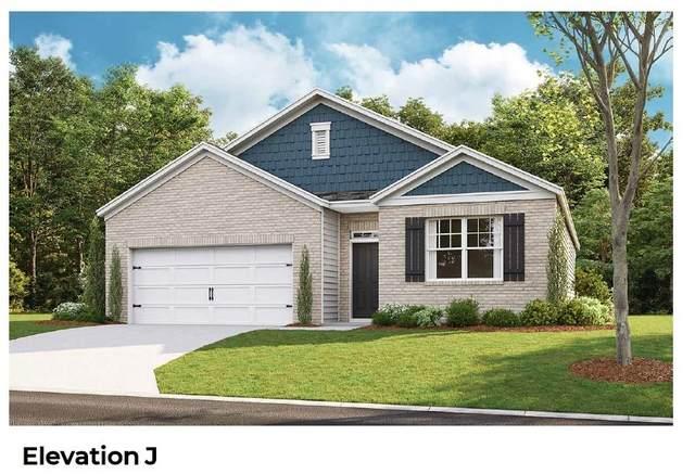 1039 Titan Lane, White House, TN 37188 (MLS #RTC2168568) :: Maples Realty and Auction Co.