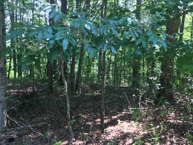0 Ridge Cliff Estates, Monteagle, TN 37356 (MLS #RTC2168590) :: Nashville on the Move