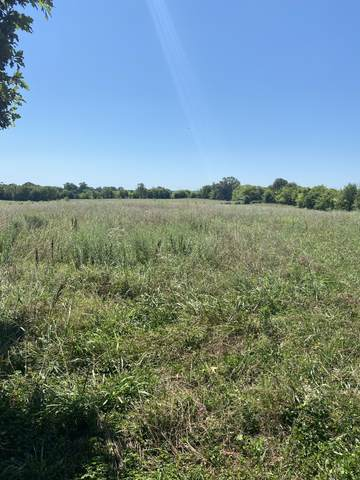 0 Deer Ridge Road, Primm Springs, TN 38476 (MLS #RTC2168791) :: John Jones Real Estate LLC