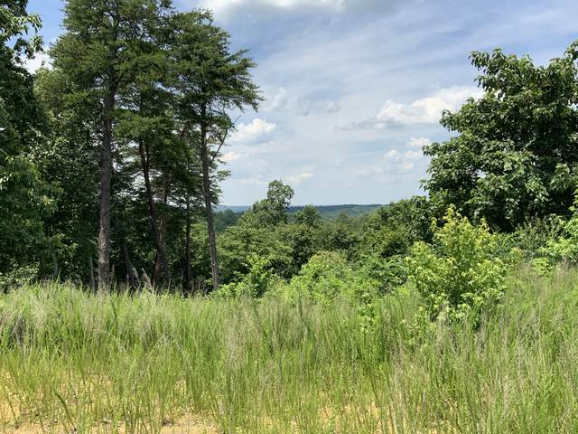 0 Lake Stone Road, Waverly, TN 37185 (MLS #RTC2169006) :: Village Real Estate