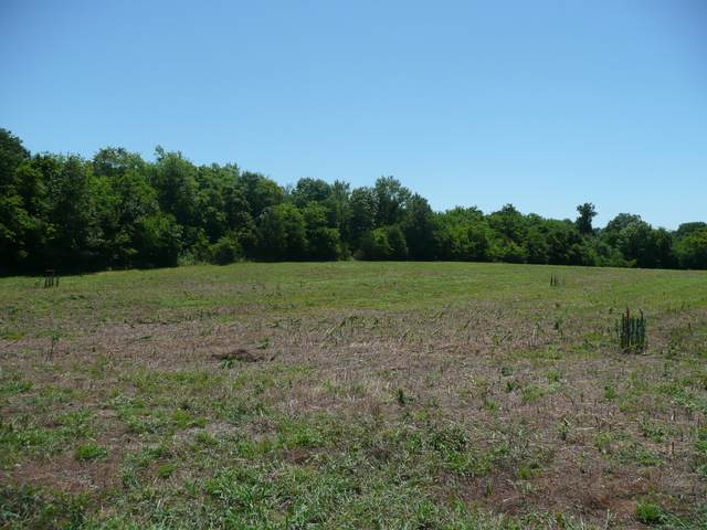 1448 Littleton Ranch Rd, Castalian Springs, TN 37031 (MLS #RTC2169414) :: Adcock & Co. Real Estate