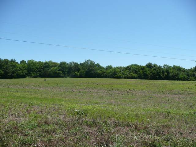 1438 Littleton Ranch Rd, Castalian Springs, TN 37031 (MLS #RTC2169419) :: Adcock & Co. Real Estate