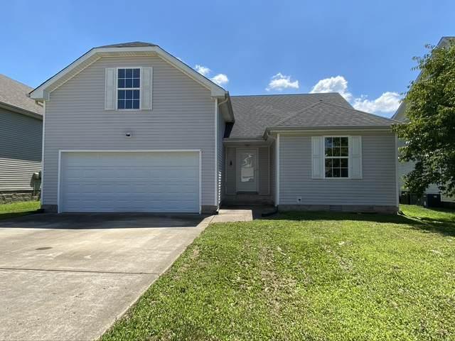 3699 Cindy Jo Dr S, Clarksville, TN 37040 (MLS #RTC2169533) :: Kimberly Harris Homes