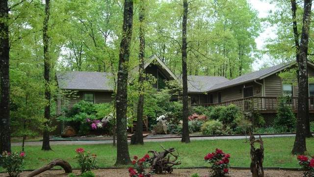 2120 Lakeshore Dr, Monteagle, TN 37356 (MLS #RTC2169543) :: The Group Campbell