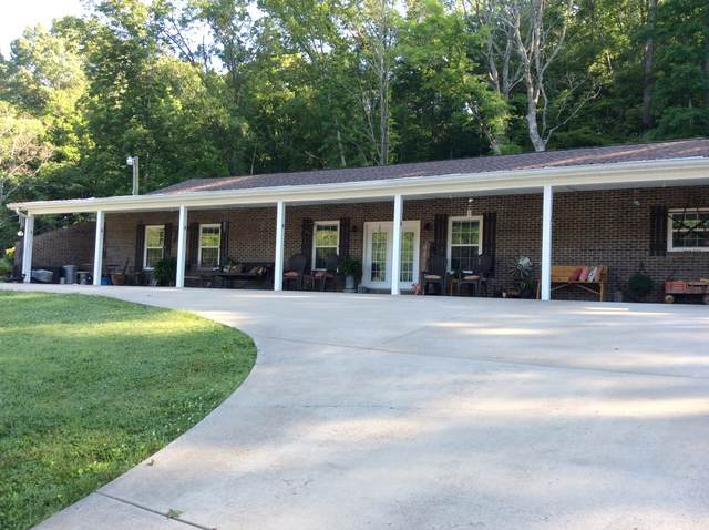 161 Shady Rest Ln, Dover, TN 37058 (MLS #RTC2169619) :: CityLiving Group