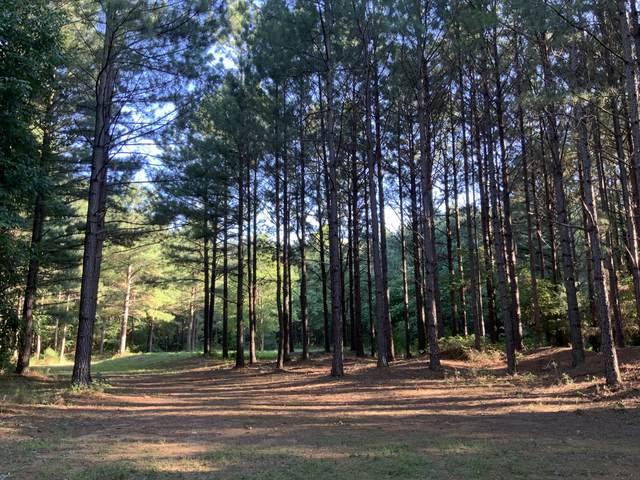 0 Hickory Trace Lane, Lyles, TN 37098 (MLS #RTC2170035) :: Village Real Estate
