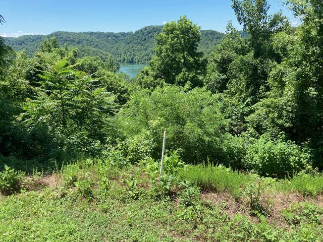 48 Nadia Lane, Smithville, TN 37166 (MLS #RTC2170106) :: Christian Black Team