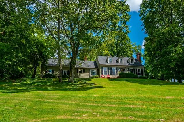 203 Hogan Lane, Columbia, TN 38401 (MLS #RTC2170129) :: Nelle Anderson & Associates