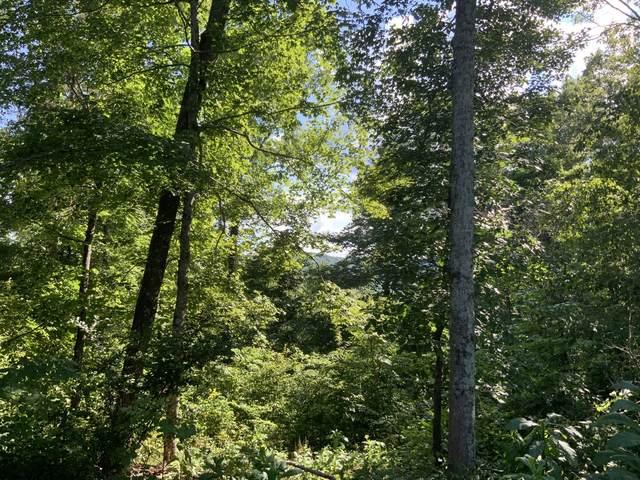 0 Cane Creek Road, Centerville, TN 37033 (MLS #RTC2170645) :: Village Real Estate